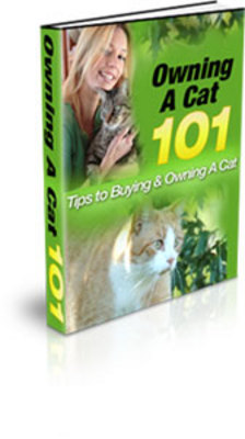 Product picture Owning A Cat 101 with PLR