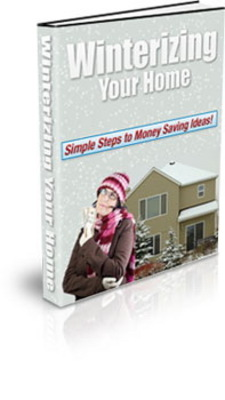 Product picture wintering your home plr